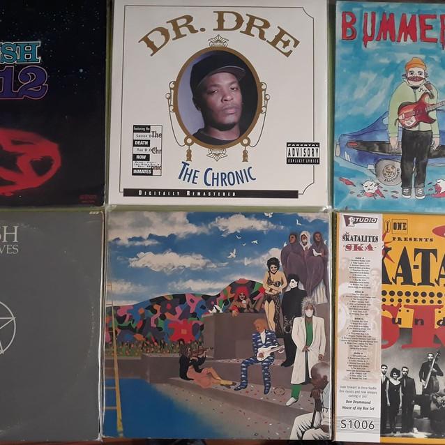 salty dog vinyl records sarasota.jpg