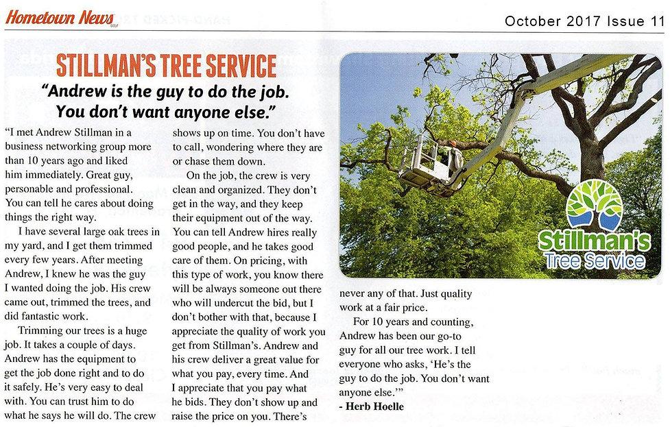 tree services and tree trimming bradenton sarasota