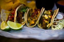 tacos gulf gate sarasota