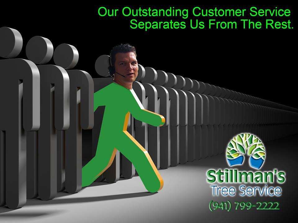 STILLMANS TREE SERVICES
