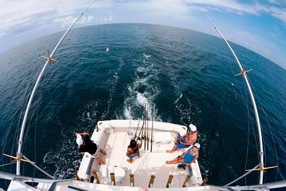 Charter fishing sarasota sarasota fishing charters for Deep sea fishing sarasota fl