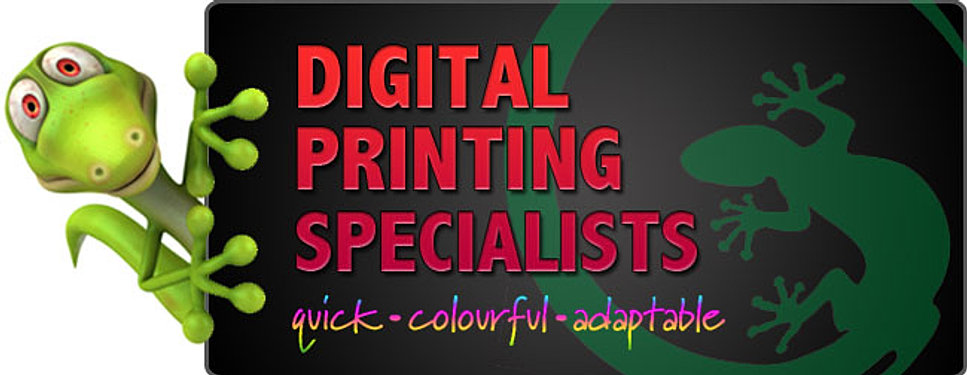 Printers Sarasota Print Shop Business Cards Gulf