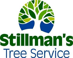 Stillman tree services bradenton sarasota
