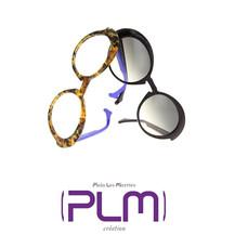 plm-1 logo.jpg