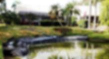 Shoreline Restoration Sarasota