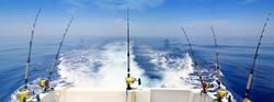 DEEP SEA FISHING SARASOTA