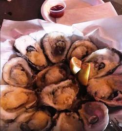 monkeffellers oysters guklf gate sarasora