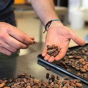Encuentro Manufacture bean to bar - Séection des meilleures fèves