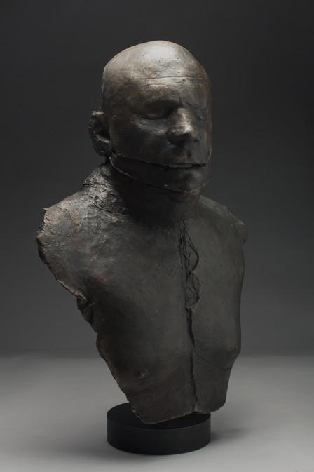 STEPHEN, no.2 (profile)