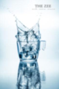 ice-2logo.jpg