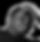 Andrew%2525252520Gray_edited_edited_edit