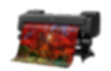 Canon%20iPF%20PRO-6100_edited.png