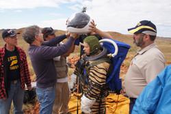 서호주 NASA 탐험