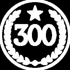 Logo 300 Branca.png