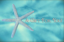 blue starfish gift card certificate conc