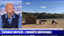 Chevaux mutilés, APNM Gendarmes et Citoyens s'exprime sur BFM-TV