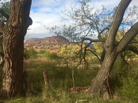 RETREATS - New Mexico - hiking - life co