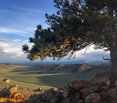 RETREATS - Coyote Ridge - Loveland - Piv