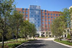 Little Company of Mary Hospital