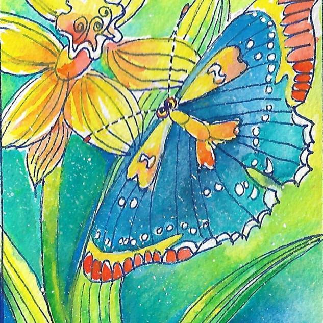 butterfly w dafodill card.jpg