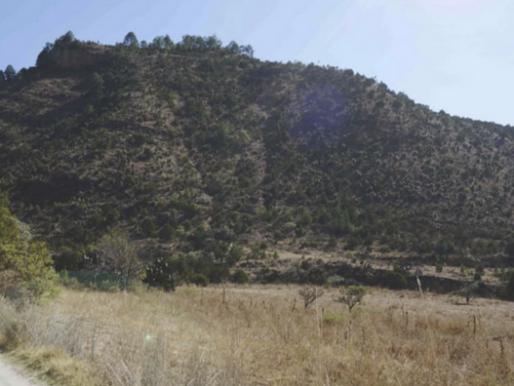 Rechaza empresa acusaciones de injerencia en proceso sobre Proyecto Minero Ixtaca