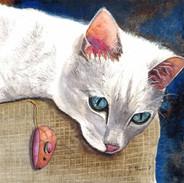 21B05C Cat Gaze.jpg