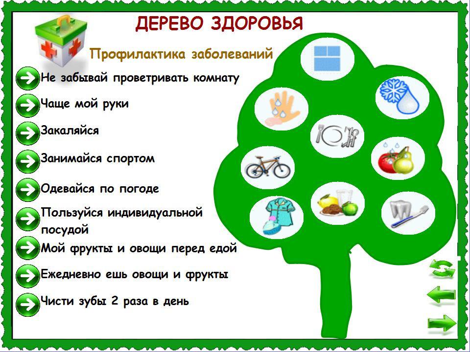 Дерево здоровья.jpg