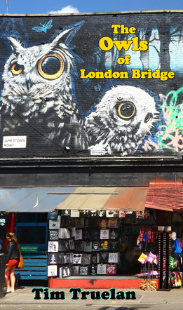The Owls of London Bridge_Tim Truelan_In