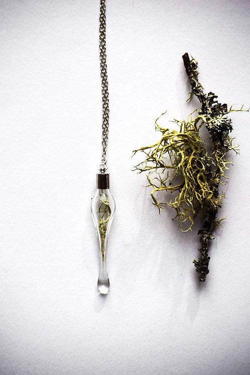Lichen Glass Pendant