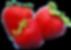 fresa 1.png