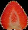 Fresa 2.png