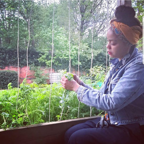 The Stylish Gardener