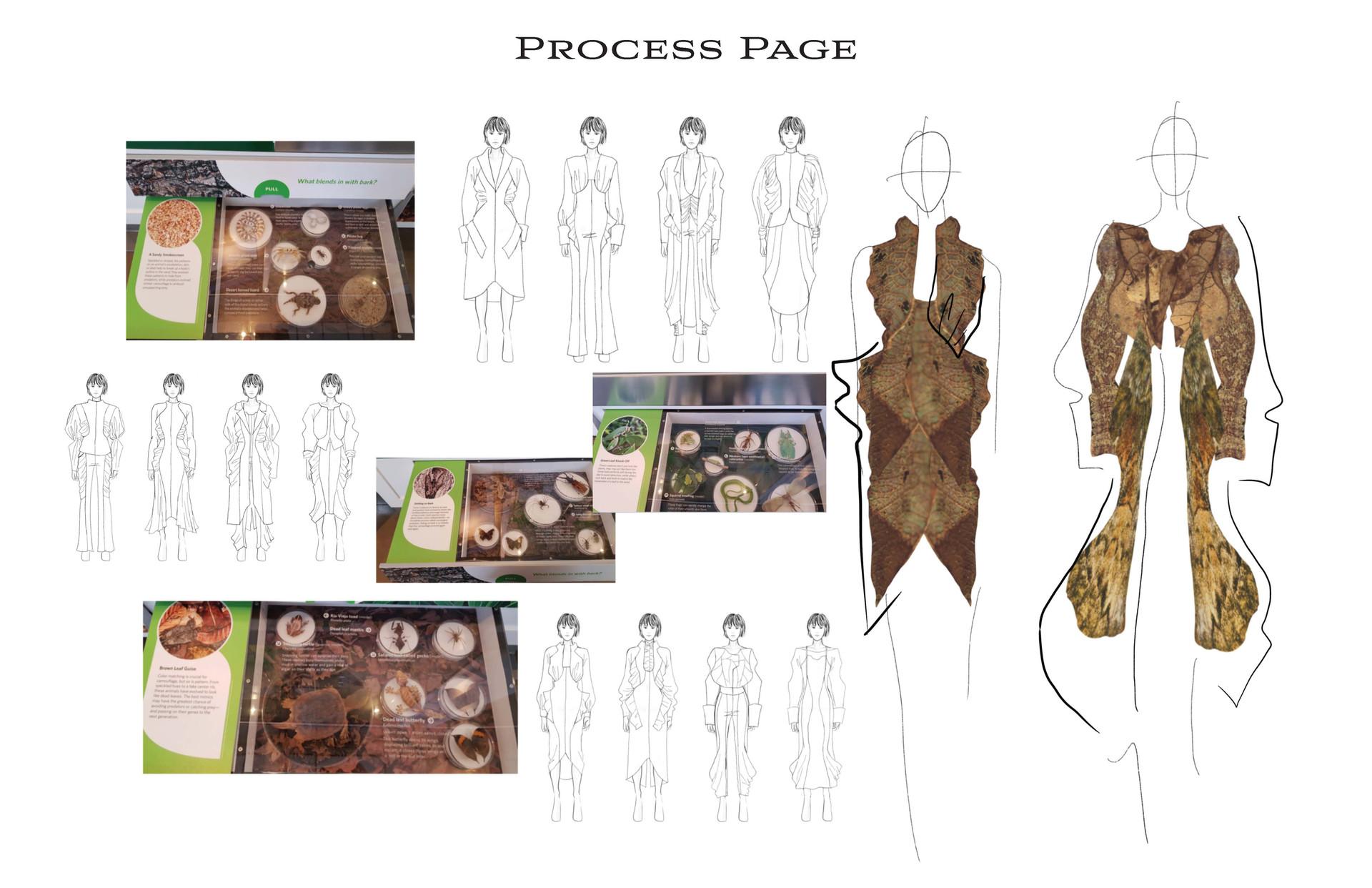 Process Page