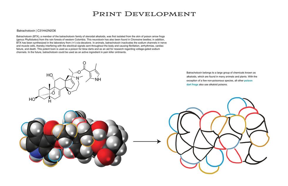 Print Development
