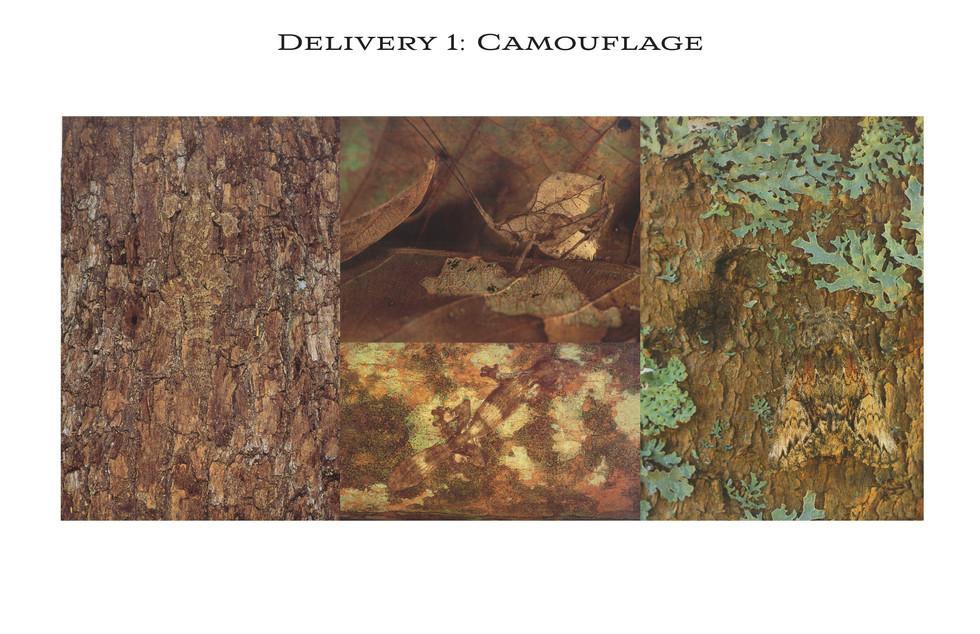 Camouflage Mood Board