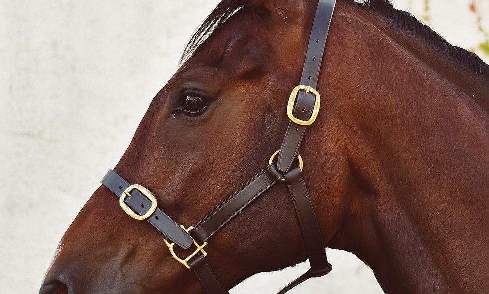 Mackey Classic Leather Headcollar