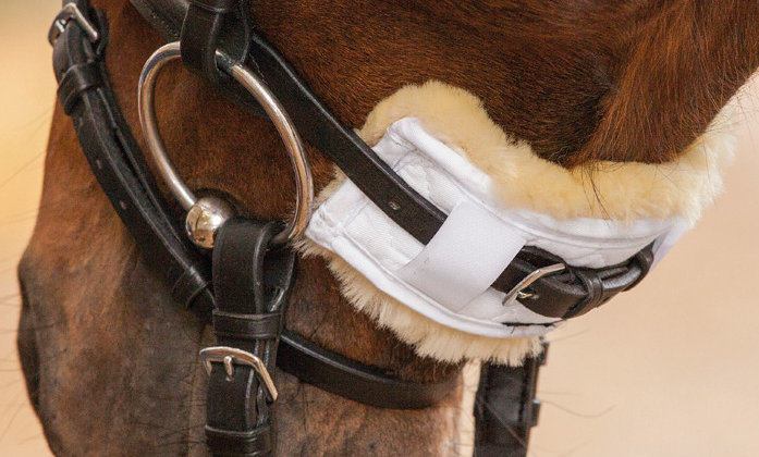 Lambskin Nose or Chin Protectionx