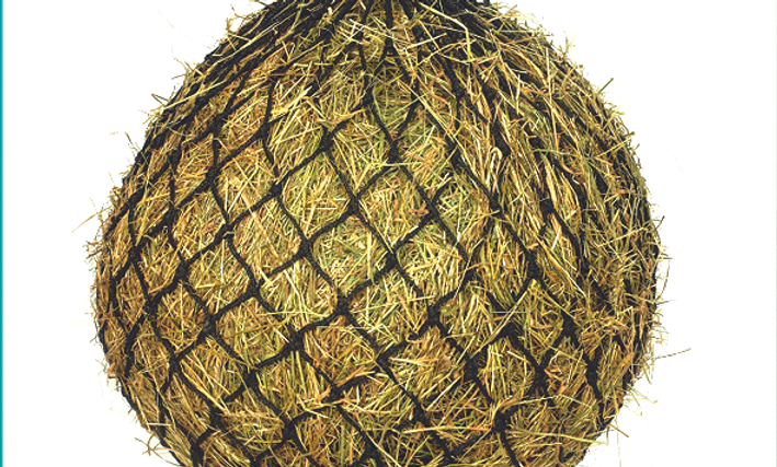 Equisential Small Mesh Hay Net