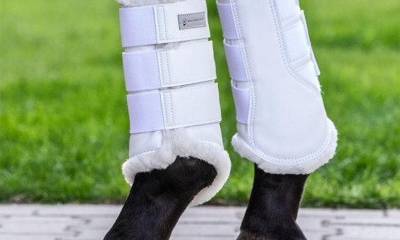 Dressage Schooling Boots