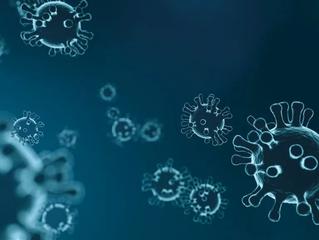 COVID-19 : vous pouvez aider à la surveillance de l'épidémie en vous inscrivant sur Covidnet.fr