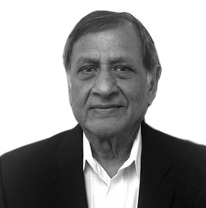 Mr. Patel has more than 40 years of progressive experience ...