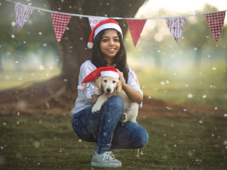A new pet - Special Occasion photoshoot