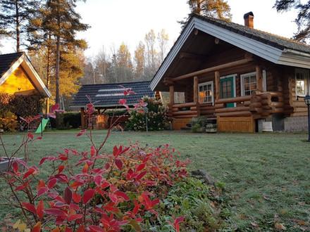 Autumn in Koru Cottage