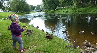 River of Pääsküla in Laagri