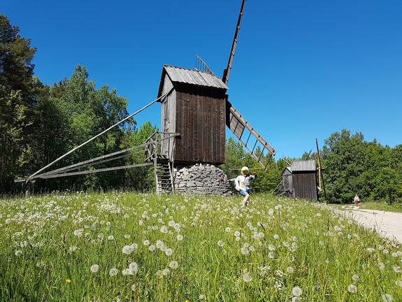 The Estonian Open Air Museum