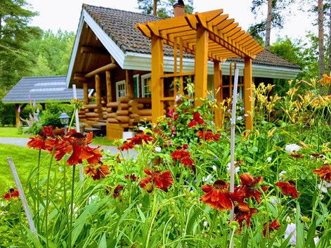 Garden view to Koru Cottage