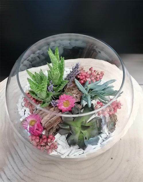 Aquarium à plantes