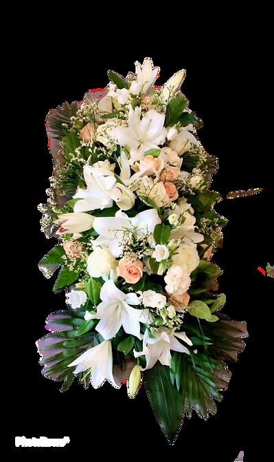 PhotoRoom_20201003_132848.png