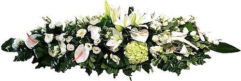 Grande Raquette/ Dessus de cercueil