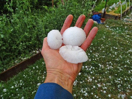 Roof Hail Damage: What To Do After a Hailstorm